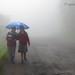 The Blue Umbrella.... by Saptak Ganguly
