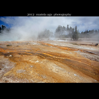 Silex Spring surroundings ~ Lower Geyser Basin