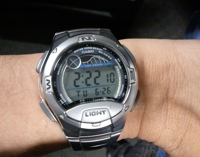 Zellers Timex Watches
