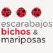 banner_escarabajos125x125