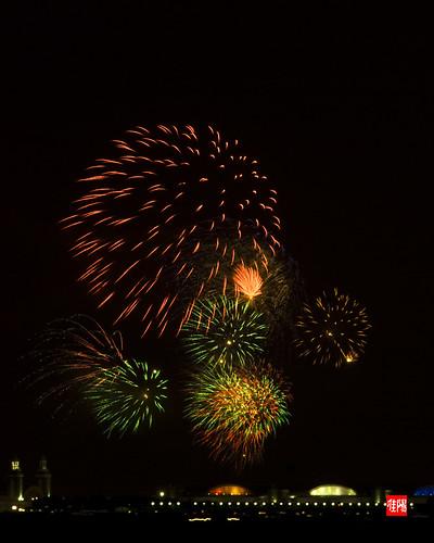 D80 CHI Fireworks 2012_07-04 09B