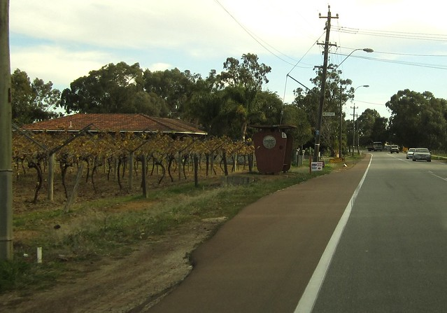 Grape vines... and a distinctive suburban Perth bus shelter, Swan Valley