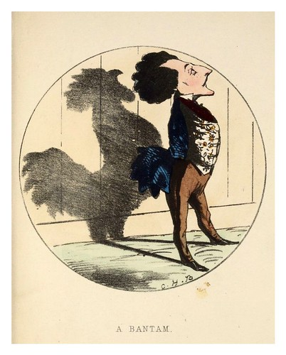 009-Un gallo-Shadows  185..- Charles Henry Bennett - © Harvard University Library