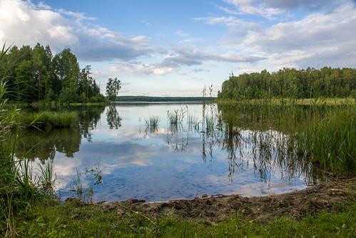 summer nature sony lithuania vasara lietuva gamta mariukasm sal16105 vietovės gražutėbicycletrail gražutėregionalpark gražutėsdviračiųtrasa gražutėsregioninisparkas šventas šventaslake šventoežeras