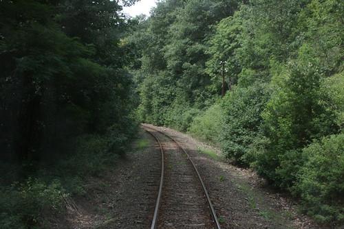 old railroad woods track line single bahn 2012 régi outdated erdei nyár nyaralás erdő berkenye július sín vasút megye nógrád öreg szokolya erdőben vágány vasútvonal elavult