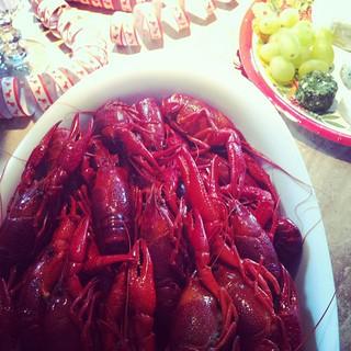 crayfish (instagram)