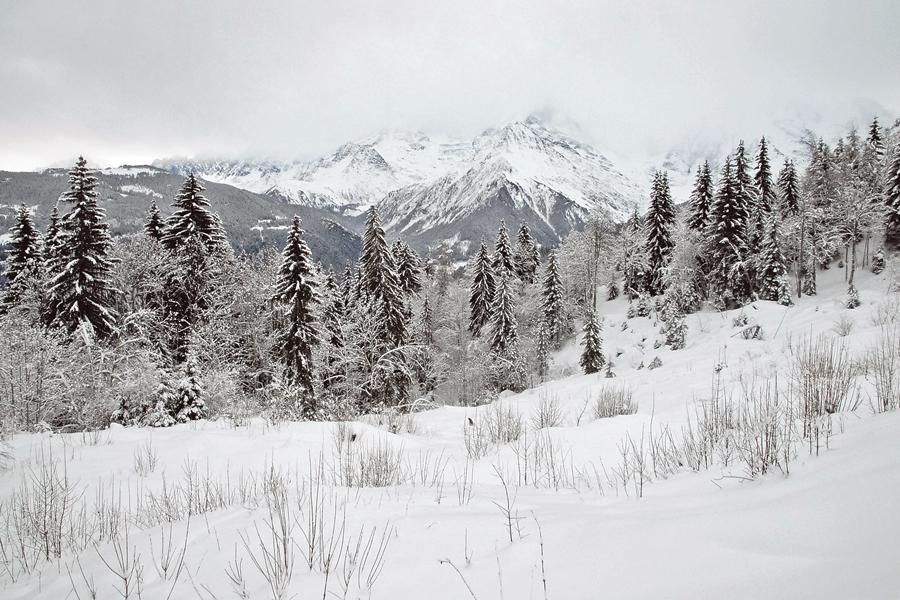 Au Pays du Mont-Blanc (9)