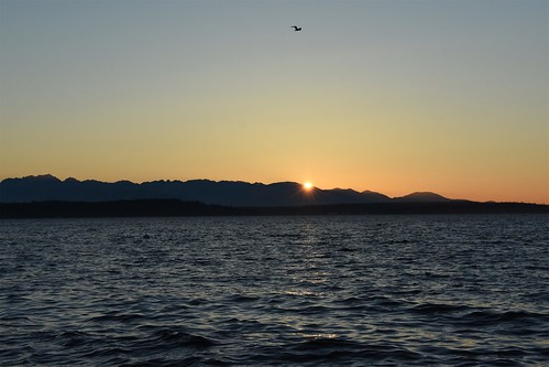 ocean seattle desktop sunset wallpaper tourism beach water photo nikon outdoor background july tourist sound alki alkibeach pugetsound puget 2016 seattlewashington 366challenge d7200 nikond7200 july2016
