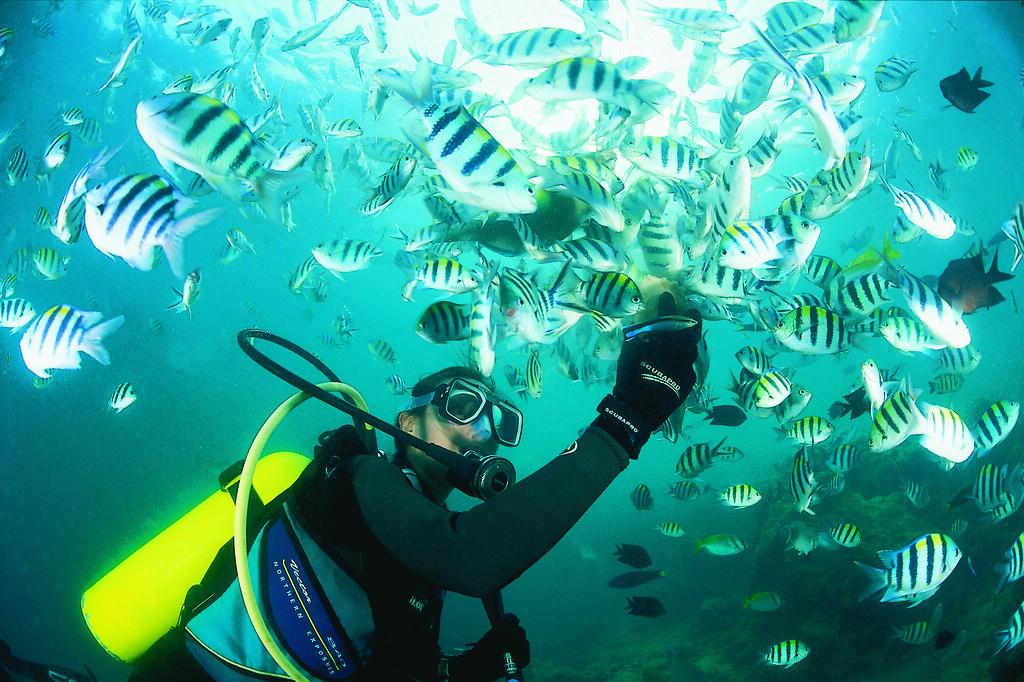 06.El Nido Resorts Activities - Introductory dive