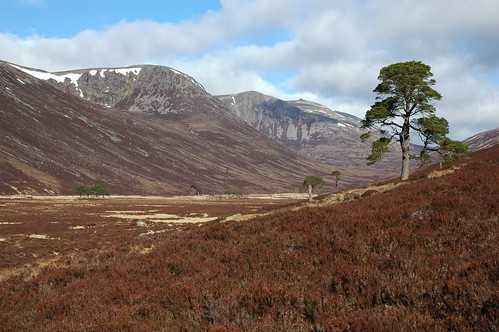 View up Glen Derry to Beinn Mheadhoin