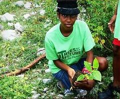 一名海地孩童響應種樹行動(地球日網絡提供)