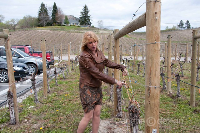 Dirty Laundry Vineyard's Viniculturist/Sales Mgr Judi Skinner