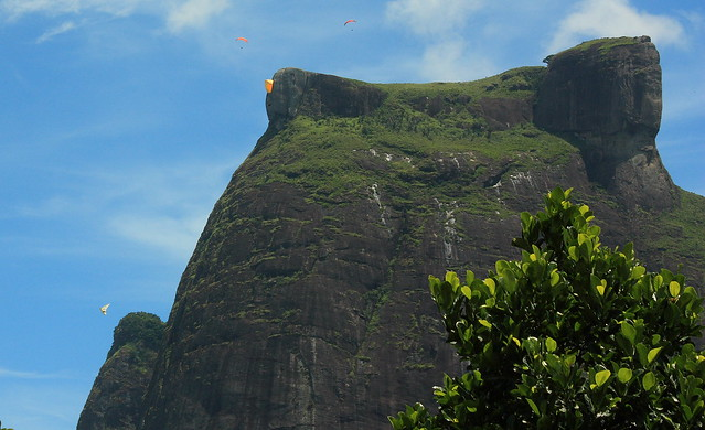 5 Unusual Things To Do In Brazil