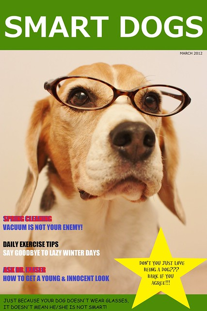 Smart Dogs Magazine - Mar 2012