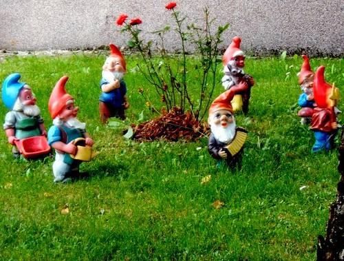 GardenGnomes collection