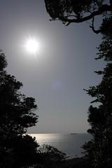 洲崎神社から見える海