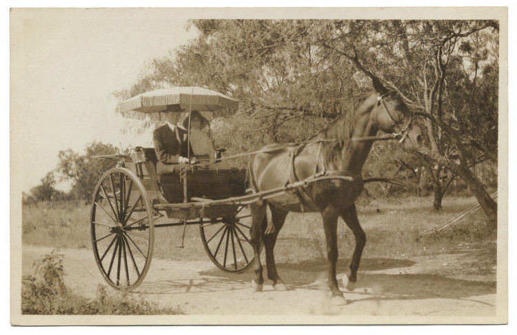 [Young couple sitting in horse-drawn carriage]