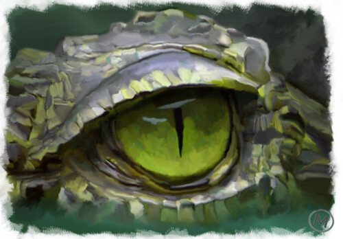 La mirada del cocodrilo by JLMeana