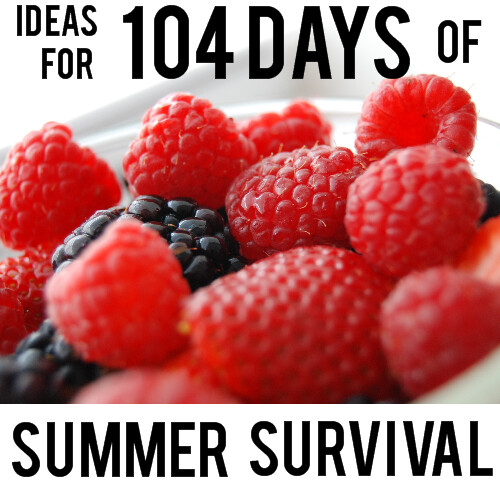 Summer Survival