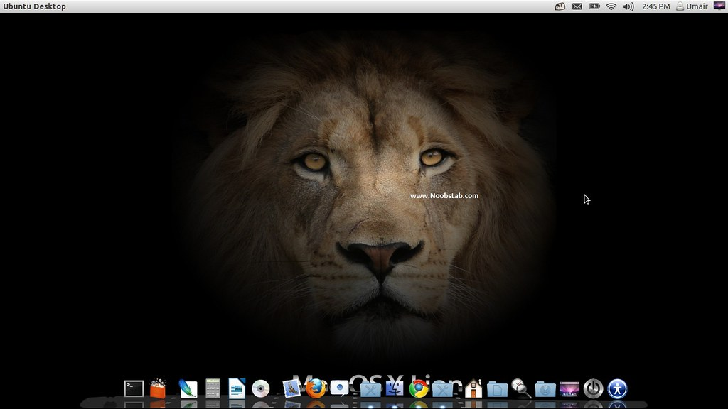 Install Mac OS X Lion on Ubuntu 12 04 Precise Pangolin/Linux