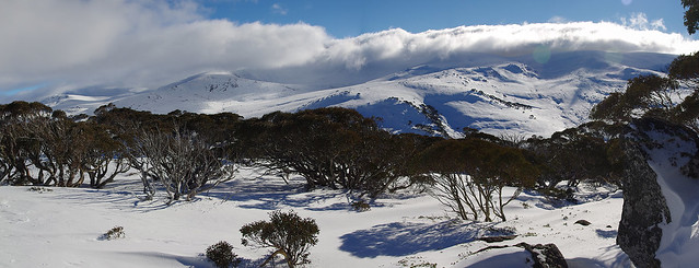 Snowy Mountains Panorama - Carruthers Peak etc viewed from top of Guthries ski run, Charlotte Pass Village