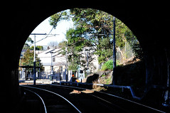 Approaching Glebe station