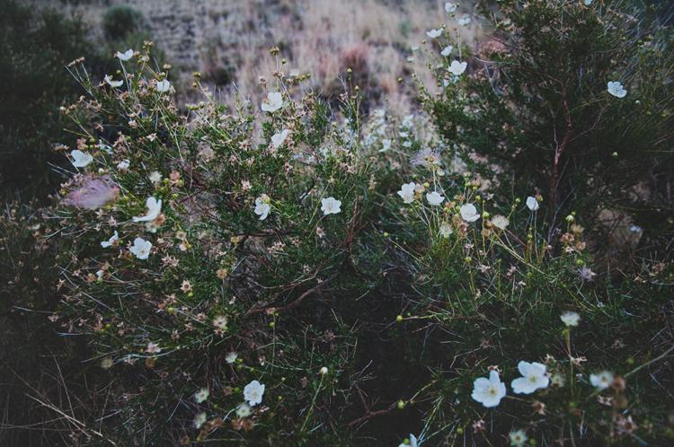 blog18