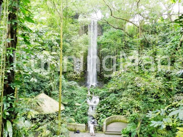 Jurong Bird Park 09