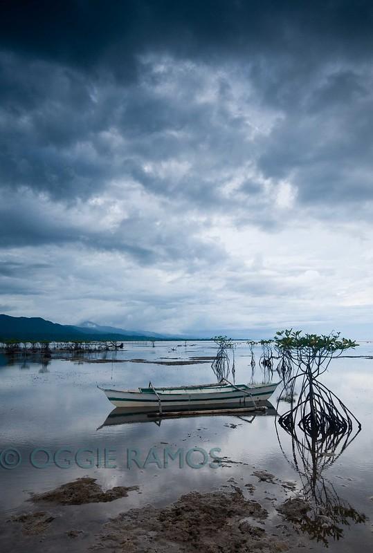 Divilacan Dicatian Mangrove Reflections