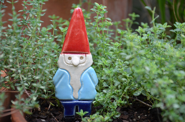 gnome by Tasha McKelvey