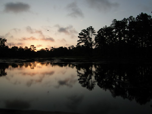 summer sky favorite sun black reflection green water sunrise landscape newjersey outdoor nj northamerica marsh campground wetland waterscape richtung portrepublic silhuetas mullicariver collinscove болота ньюджерси palustrinewetlands chestnutlake честнатлейк