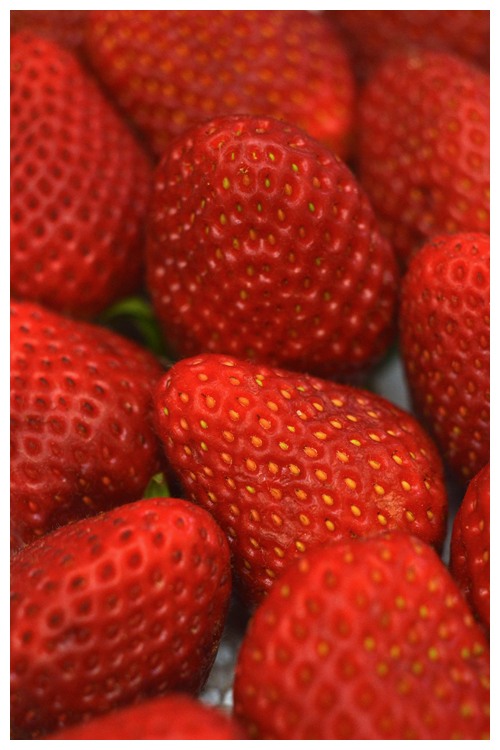 strawberry© by Haalo