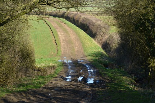 20140222-13_Jurassic Way_Track north of Staverton