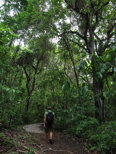 Panama City: Parque Natural Metropolitano