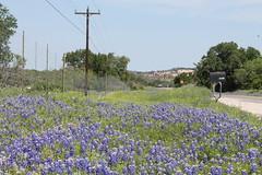 Enchanted Rock, Texas