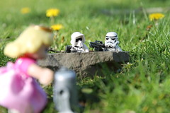 """""""I told you, you leave an R2 unit out by itself and the Princesses come to tell it their secrets. Let's go grab her."""""""
