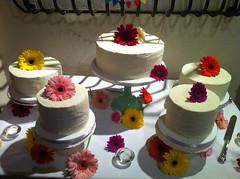 buttercream(0.0), wedding ceremony supply(1.0), cake(1.0), flower(1.0), sugar paste(1.0), food(1.0), cake decorating(1.0), icing(1.0), pasteles(1.0), wedding cake(1.0), cuisine(1.0), pink(1.0), petal(1.0),