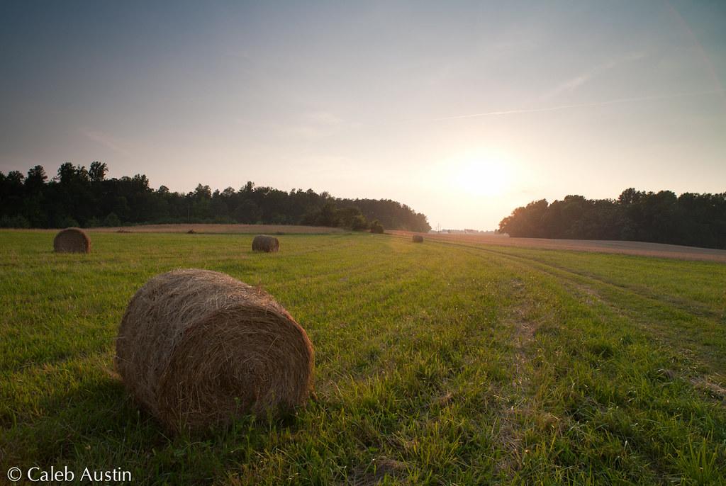 IMAGE: http://farm8.staticflickr.com/7264/7414515882_763a689ec5_b.jpg