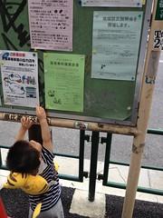 朝散歩とらちゃん (2012/6/24)