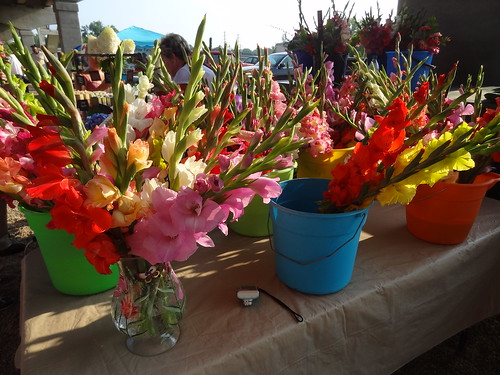 Farmers' Market June 23, 2012 (2)