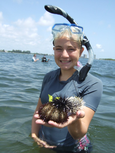 Elissa with 3 species of sea urchins