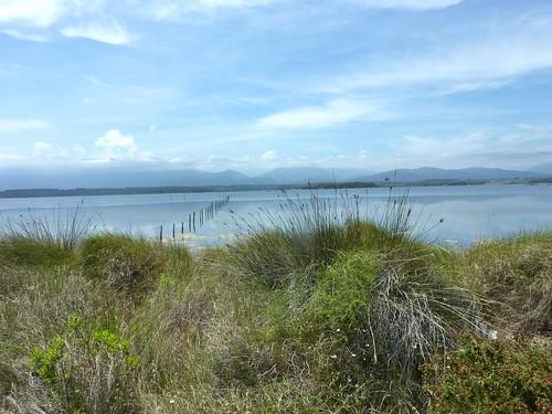 Marche le long de Foce de Fierascuti : ouverture sur l'étang avec pêcheries