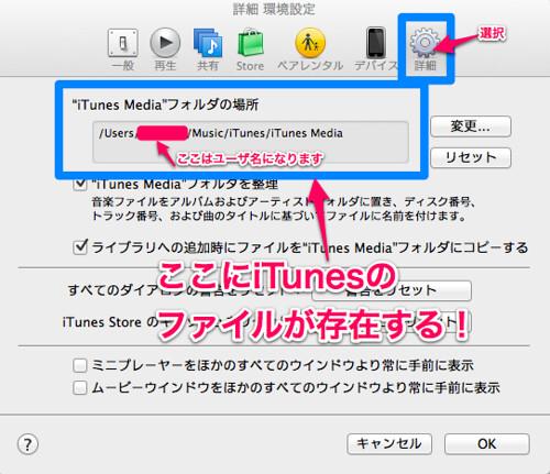 iTunes詳細 環境設定