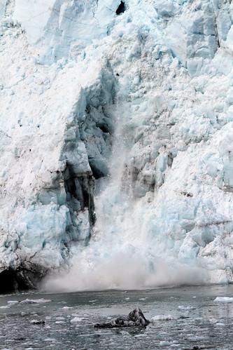 Glacier Bay - Calving Continues