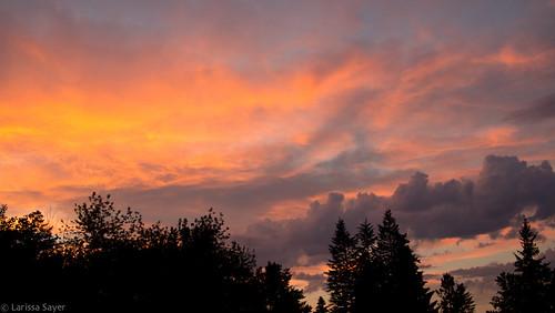 travel sunset summer sky orange canada silhouette clouds purple britishcolumbia eastkootenay canalflats kootenayvalley