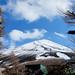 View of Mount Fuji's Peak - Japan