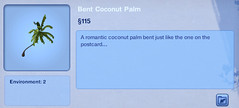 Bent Coconut Palm