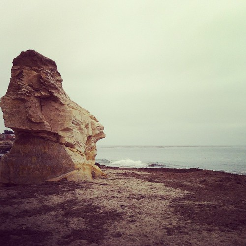 West Cliffs -- Santa Cruz