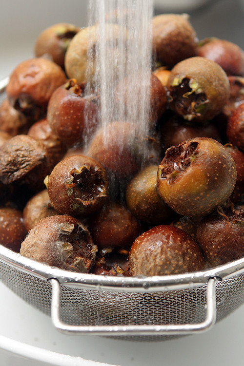 washing medlars for medlar jelly
