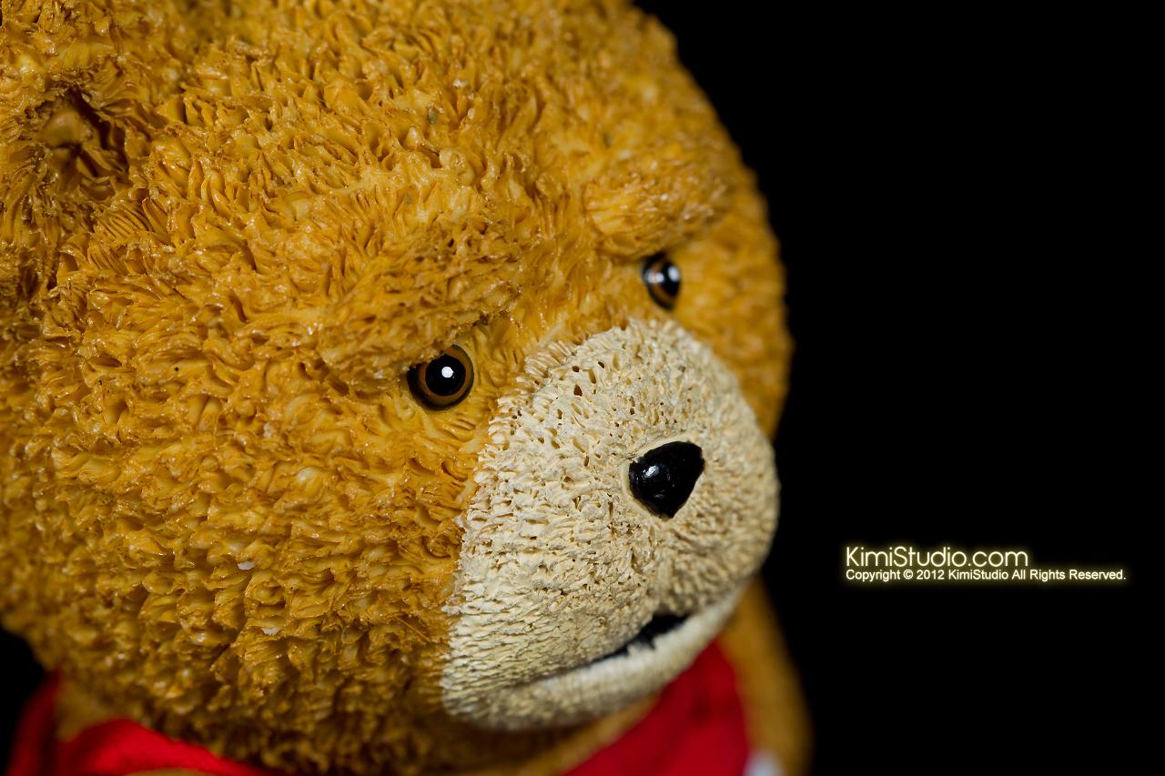 2012.11.01 Teddy-017